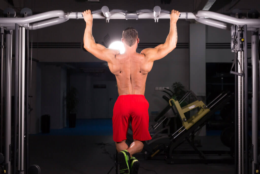 pull up bar abs workout