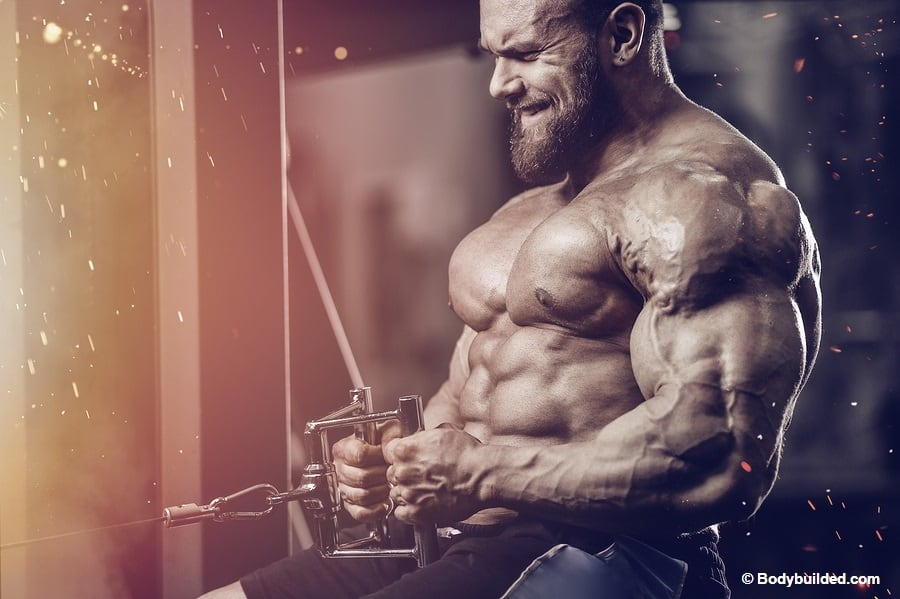 Bulking workout tips for massive bulk