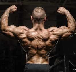 triceps workouts for mass