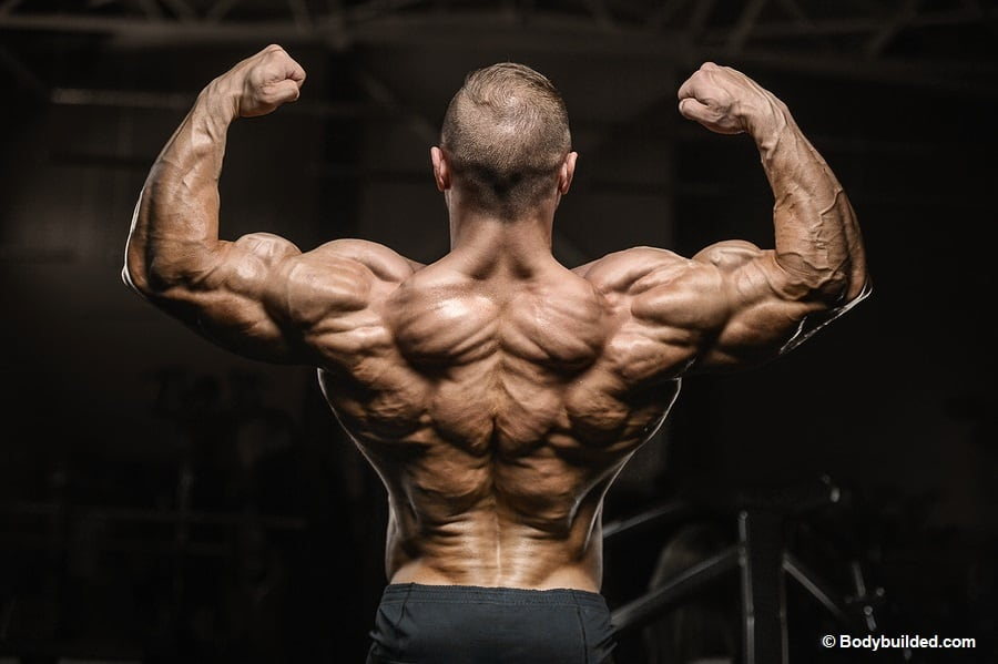 Best back exercises to get ripped