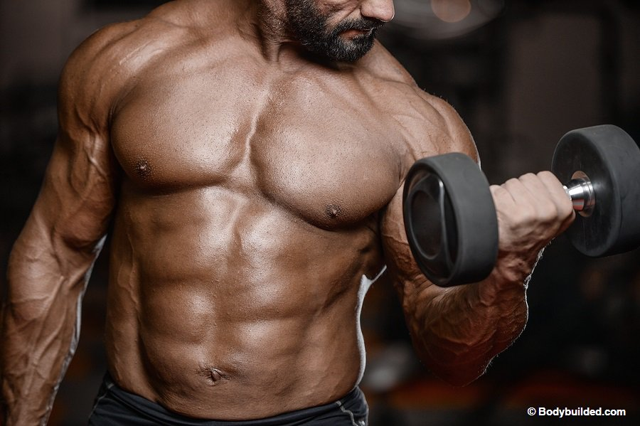 Best workout tips for bigger biceps
