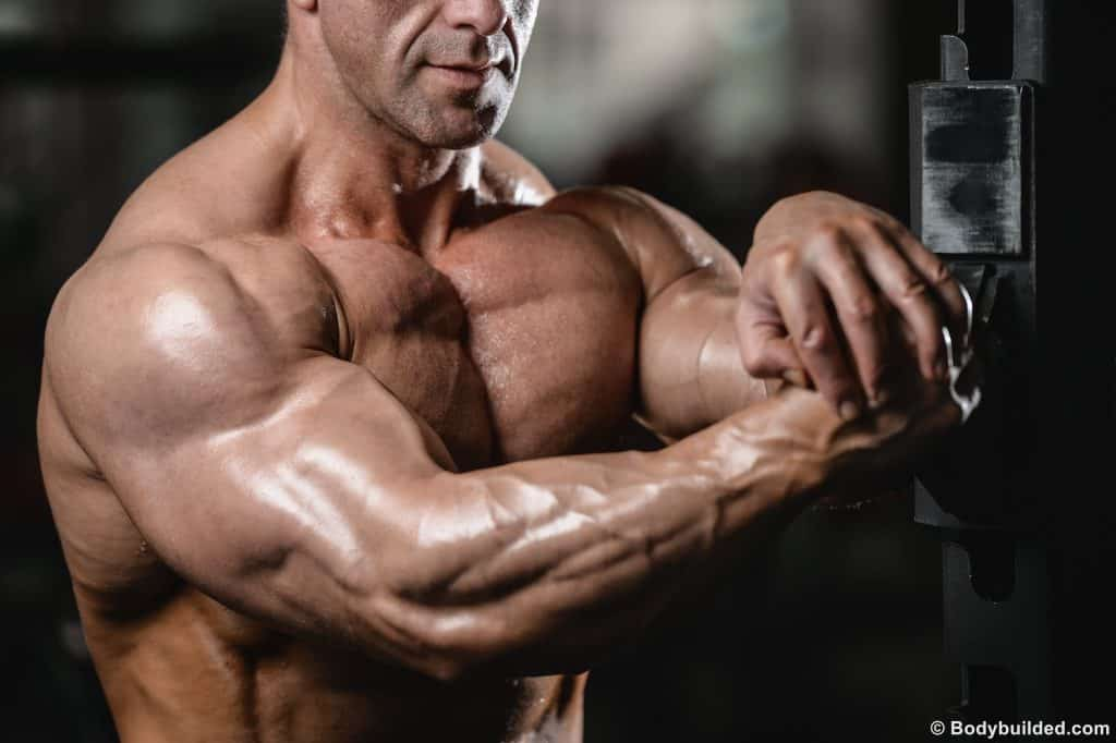Best Bicep and triceps workouts for big arms