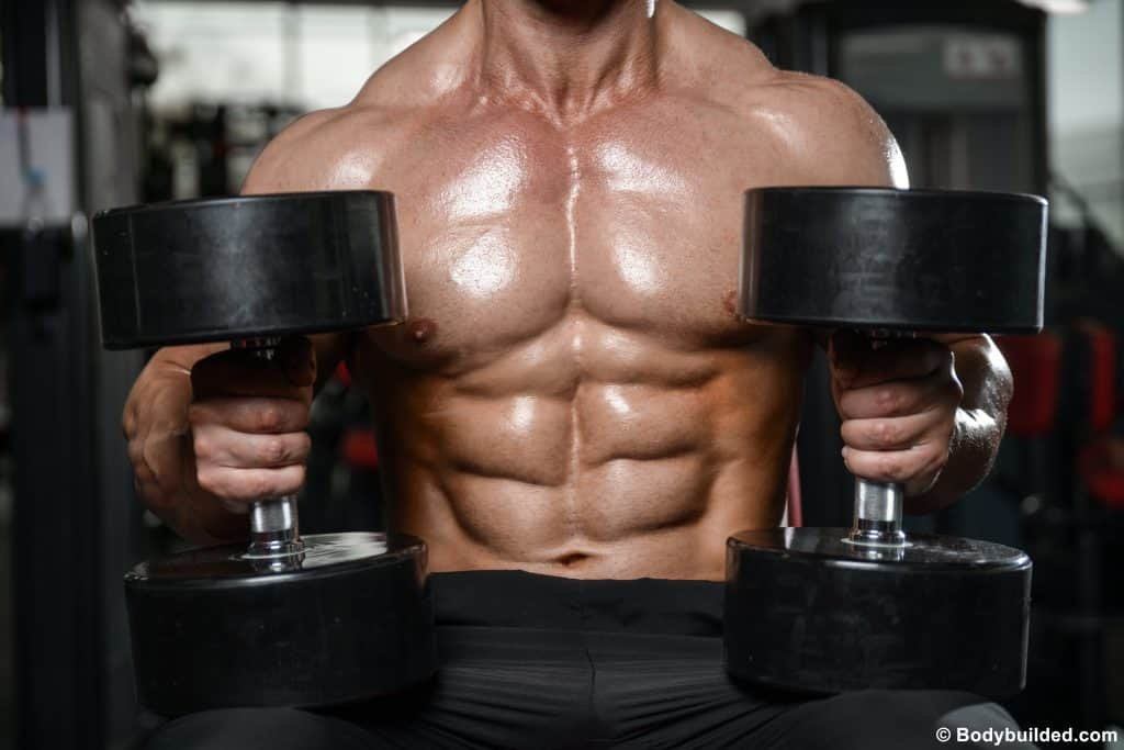weighted ab workouts for six pack