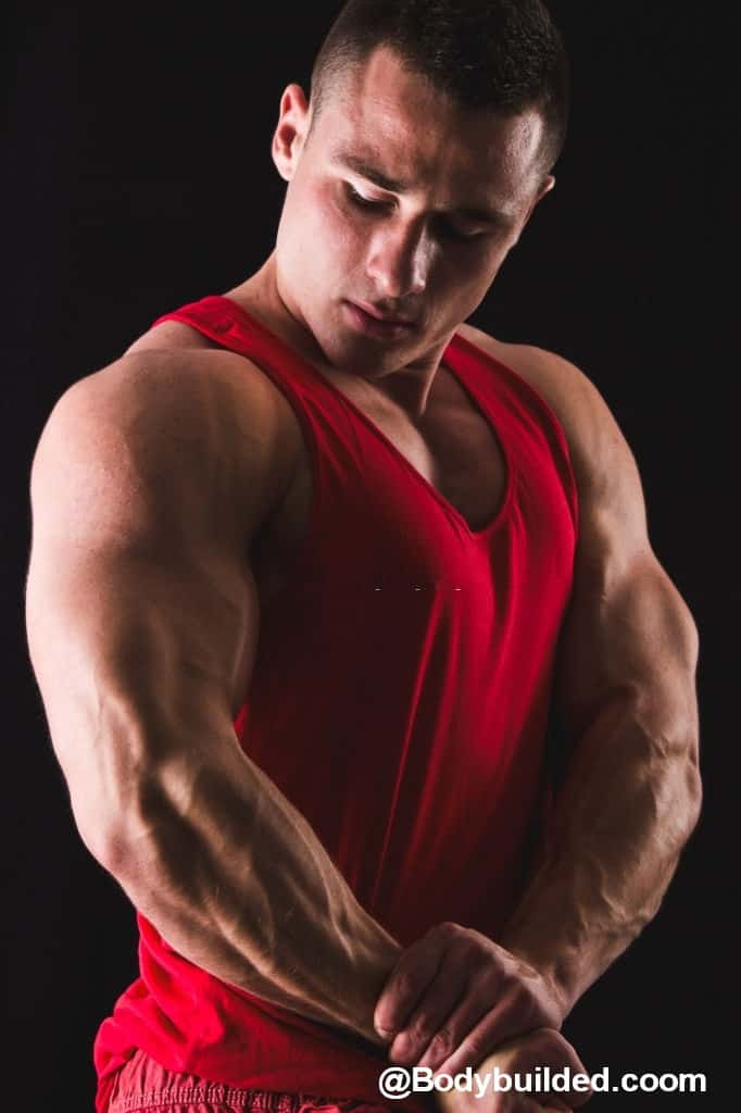 Big Triceps workouts
