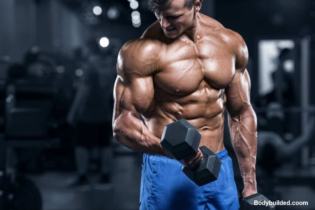 Bicep & Triceps muscles are not only for good looks