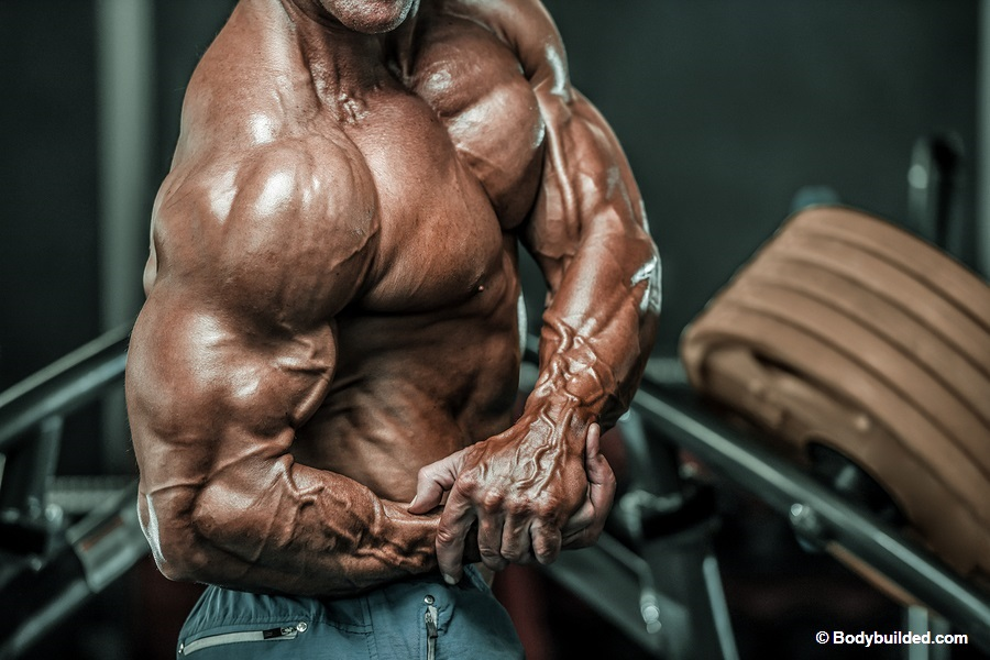 How to get bigger triceps fast?
