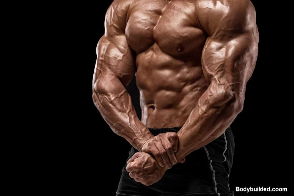 Tricep muscles for big arms