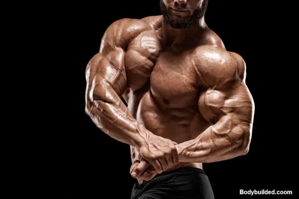 Tricep workouts for big arms