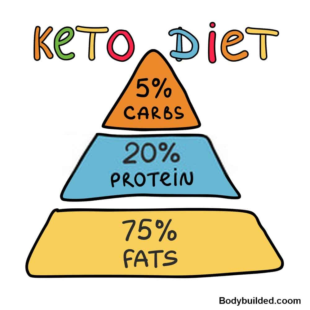 protein in the middle of keto food pyramid